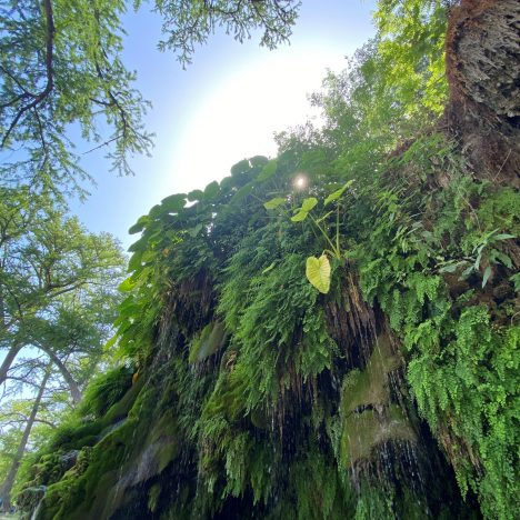 On the Edge: Hiking the Best Ranked Trail in Arkansas